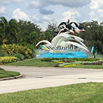 Visit Sea World, Florida StayCation